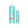 Hair Company HAIR LIGHT BIO ARGAN Шампунь с Био маслом Арганы 250 мл.